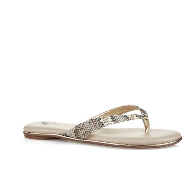 נעלי נשים- נעלי אצבע - Shoester
